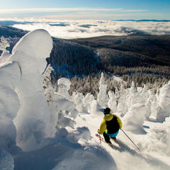 Fresh powder at Big White