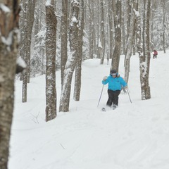A ski instructor leads Burke Explorers through the trees. Photo Courtesy of Burke Mountain Resort, flickr.