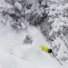 Front Range resident, Andy Wendberg enjoy's powder this past Saturday. 