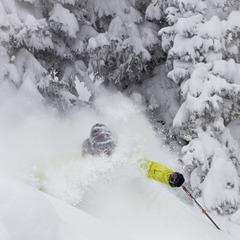 Front Range resident, Andy Wendberg enjoy's powder this past Saturday.  - ©Jeff Cricco