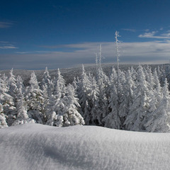 You won't find any red, green or gold at Snowshoe this time of year. Just pure white. Photo Courtesy of Snowshoe Mountain Resort.