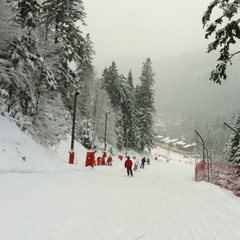 Point neige dans les Vosges (17/01/2013)