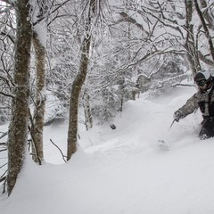 Northern resorts, like Jay Peak, were some of the only resorts to receive significant fresh snow over the past week.
