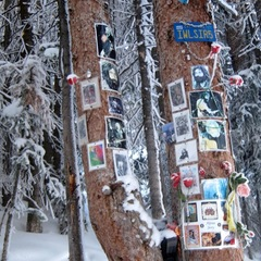 The Jerry Garcia Shrine located on Aspen Mountain. - ©Amanda Rae