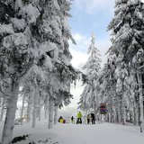 Powder day in Harrachov, CZE - © Skiareál Harrachov - facebook