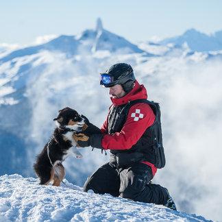 Lawinowy psi patrol: cztery łapy na ratunek człowiekowi - © Logan Swayze