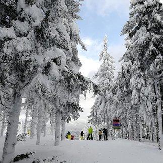 Powder day in Harrachov, CZE - © Skiareál Harrachov - facebook