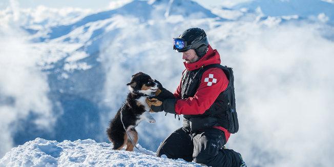 Pup Patrol: poten schieten ter hulp. - © Logan Swayze