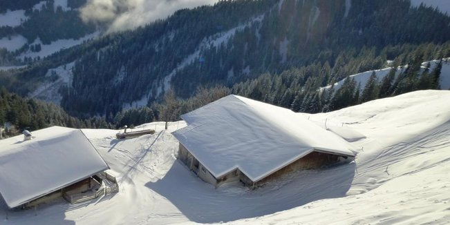 Best of snow: Die schönsten Bilder aus dem Januar 2019 - © Wildschönauer Bergbahnen