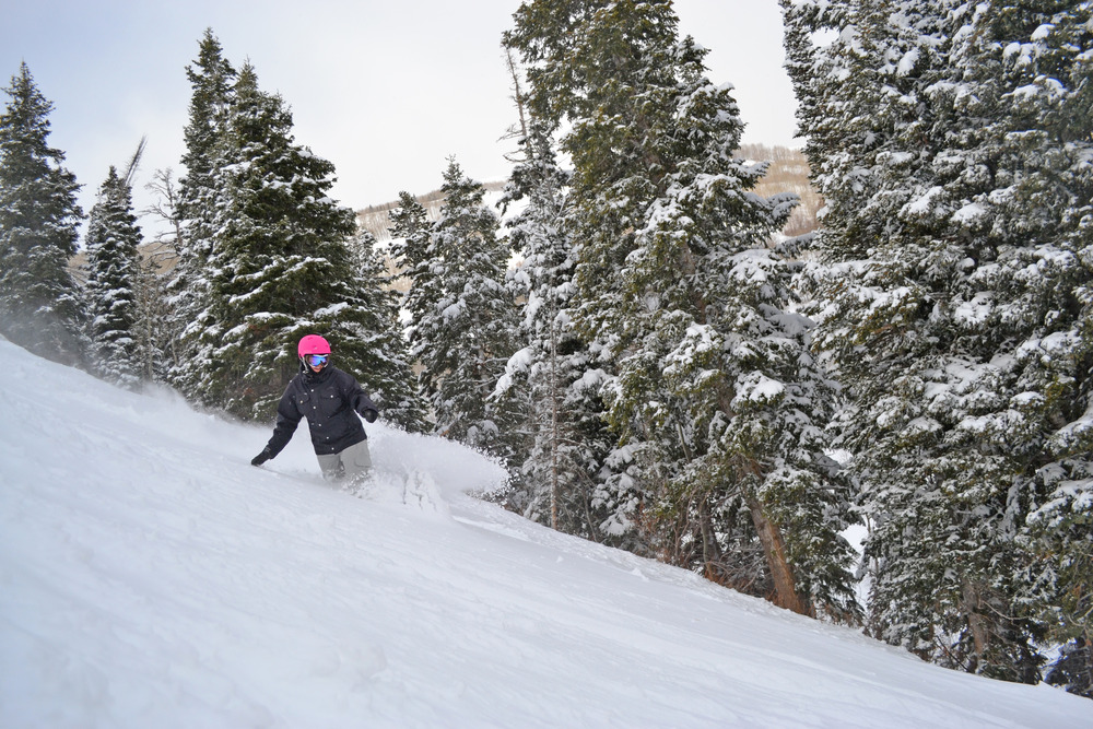 Utah's famously light powder at Park City Mountain Resort. Photo Courtesy Park City Mountain Resort