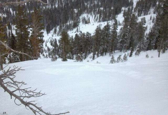 Snow everywhere! Big storm comin up next few days too! Fri and Sat we're epic!