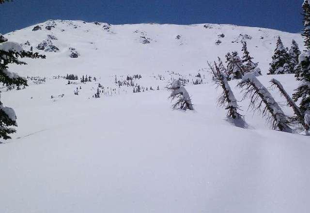 "21""reported@the ski area"