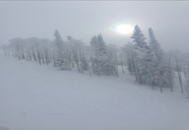 great powder and still snowing!