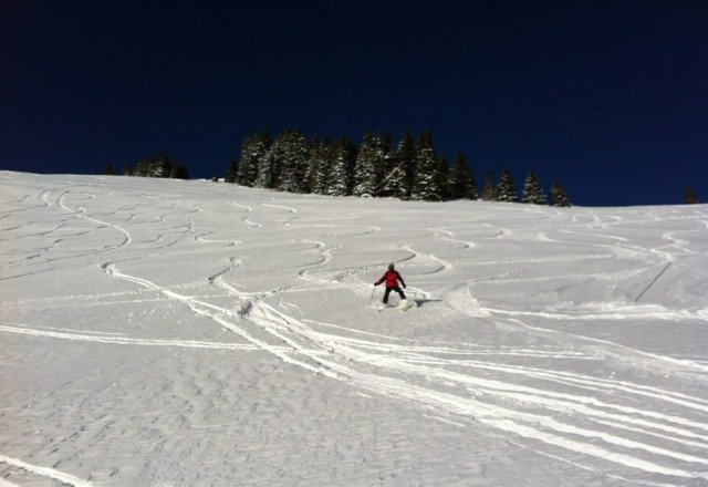 back bowls opened today, fresh tracks all morning, a few rocks, but so what...