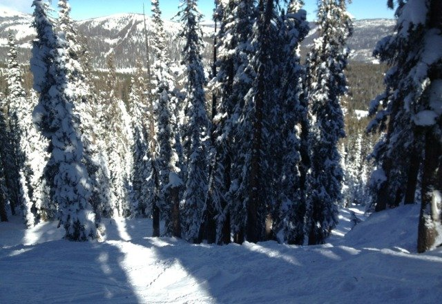 Good day today...still plenty of pow in the bowls and trees