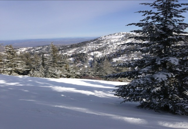 Blue skies, 3 to 5 inches of fresh snow and no crowds - How sweet it is!
