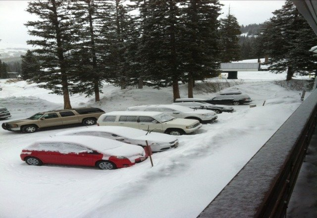 this morning at the lodge