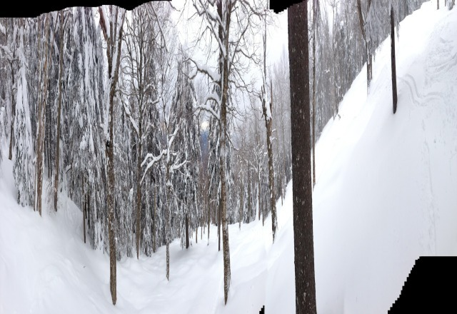 untouched glades from friday morning