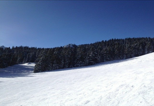 Sunday 2/10 was a fabulous bluebird day with little ice.