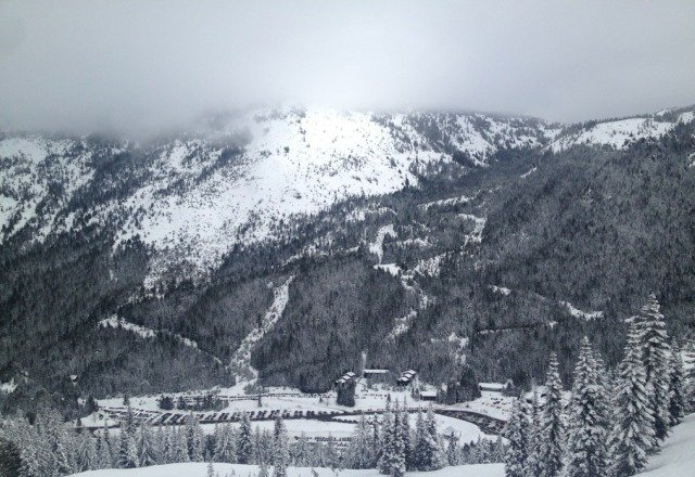 awesome day. lots of pow! little bit foggy.