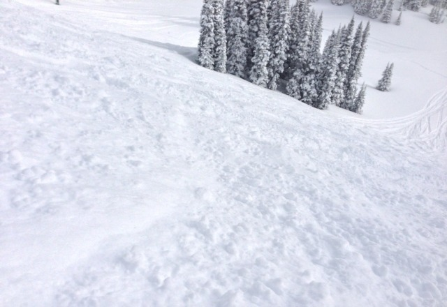 Great snow on Thu and no lines!  not too windy. A really good day. it was dumping when I left so Fri should be good as well.