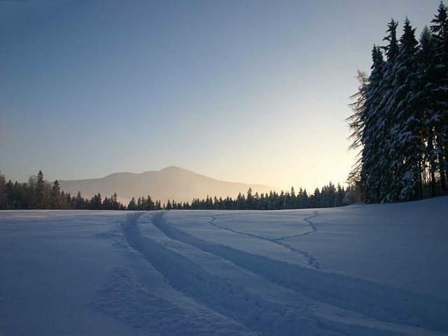 Bílá Zima