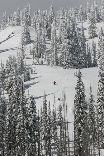 Fresh tracks for Big Red Cats skiers. - © Big Red Cats