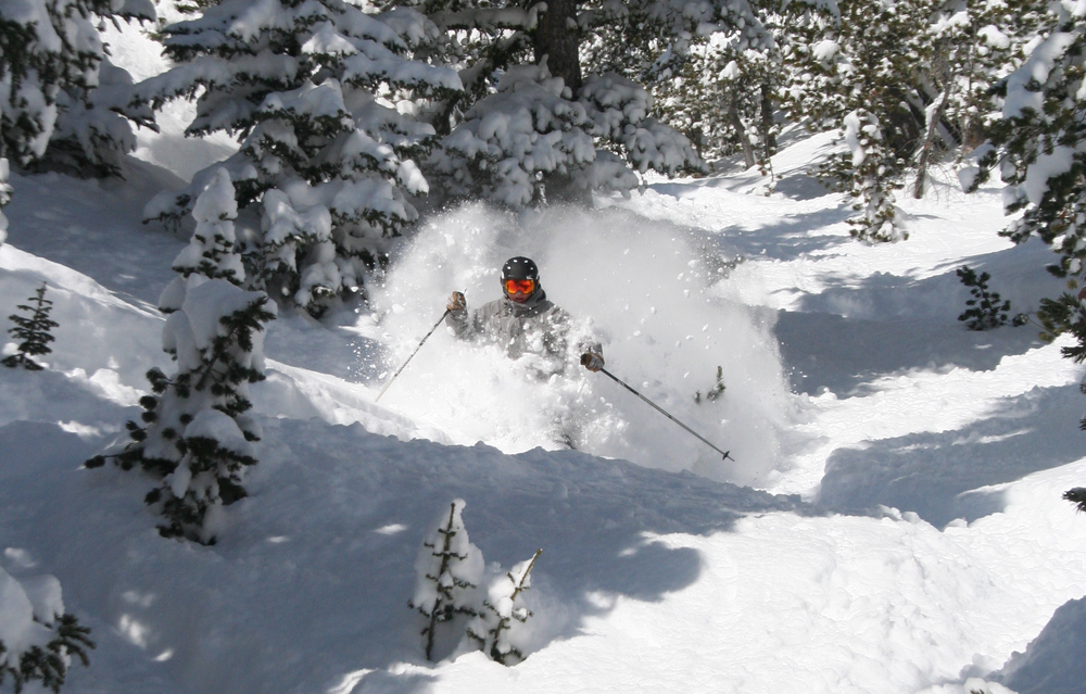 Red Lodge Mountain spring powder photo courtesy of Red Lodge Mountain Resort
