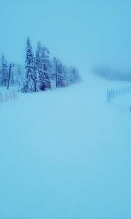 More new snow today. Very quiet on slopes. A couple of black runs closed today.