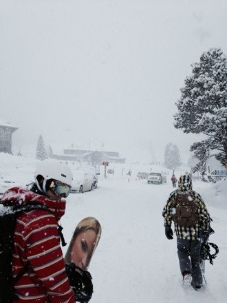 21 inches today. It was so sick.