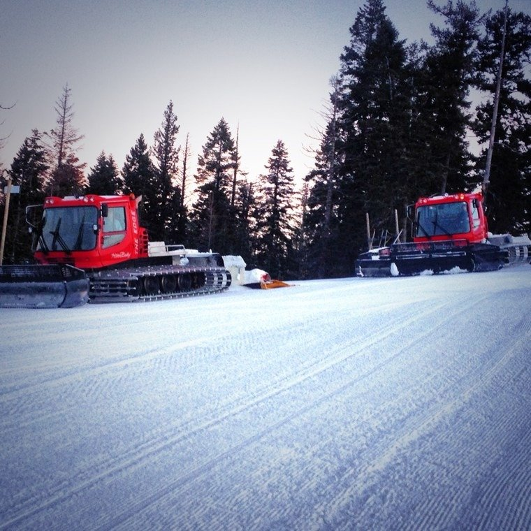 great grooming, thanks to the cat operators. snow in the forecast this week. thursday is pepsi 2 for 1 day