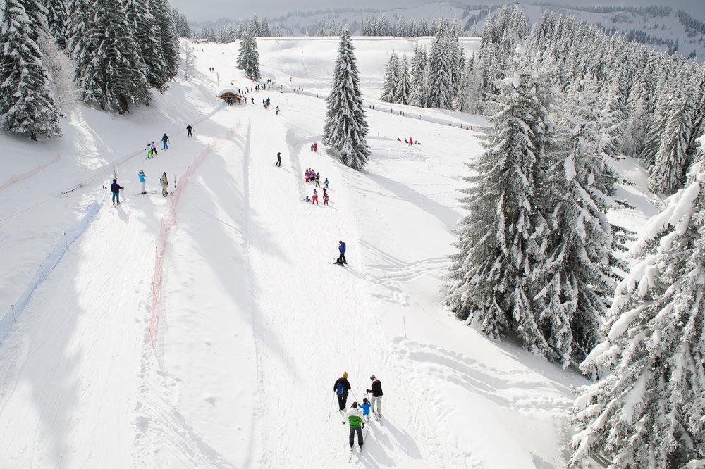 Pente douce, espace sécurisé, vitesse limitée... l'idéal pour débuter en ski