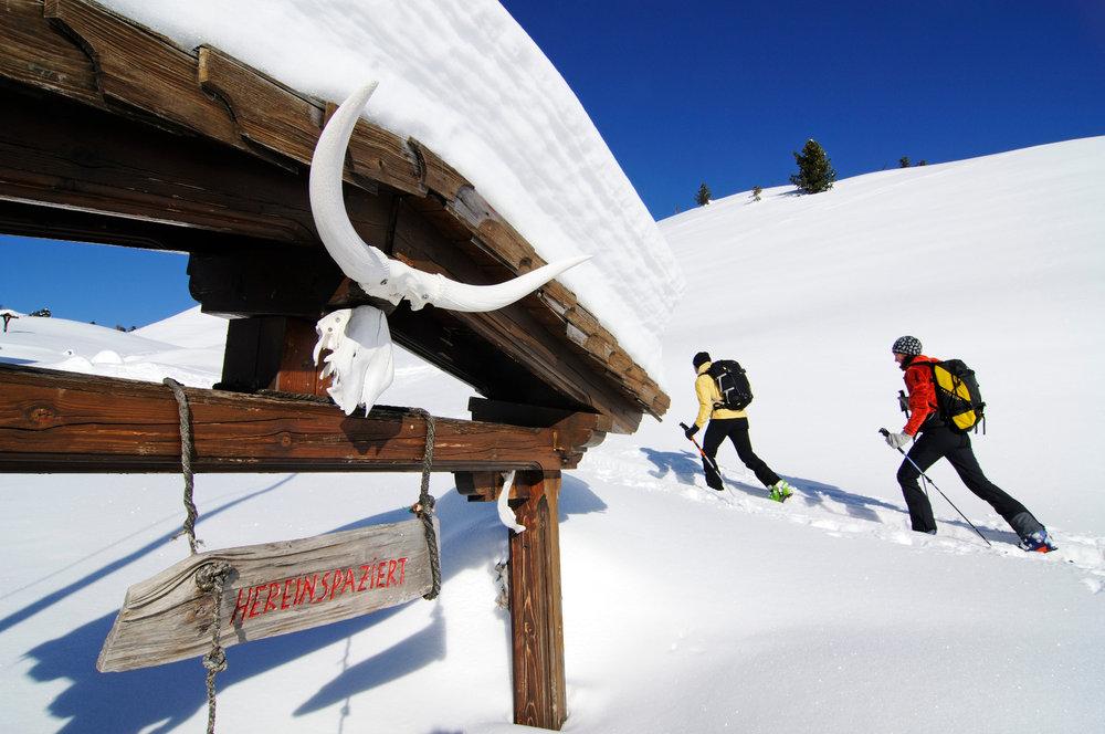 Skitourengeher im Pragser Tal auf dem Weg zum Großen Jaufen - © Norbert Eisele-Hein