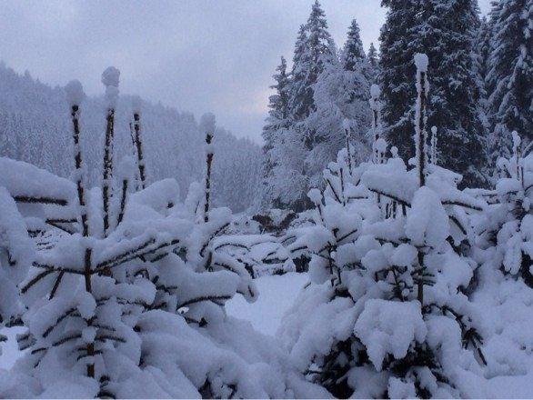La neige est tombé dans ma nuit de lundi 12 janvier très belle journée le mardi dommage que le tls de la sure était pas ouvert