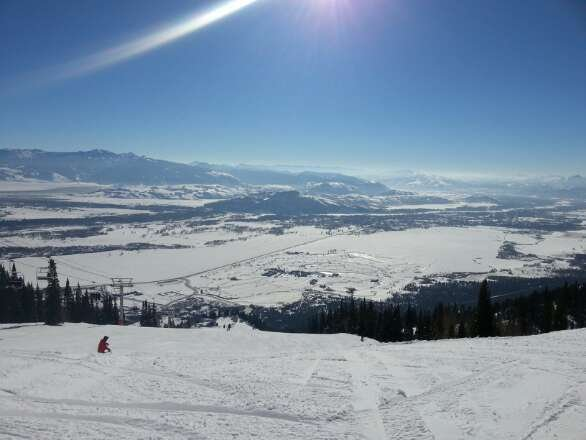 Not bad for a sunny day and no fresh snow. Groomed runs were nice. Hobacks were still open.