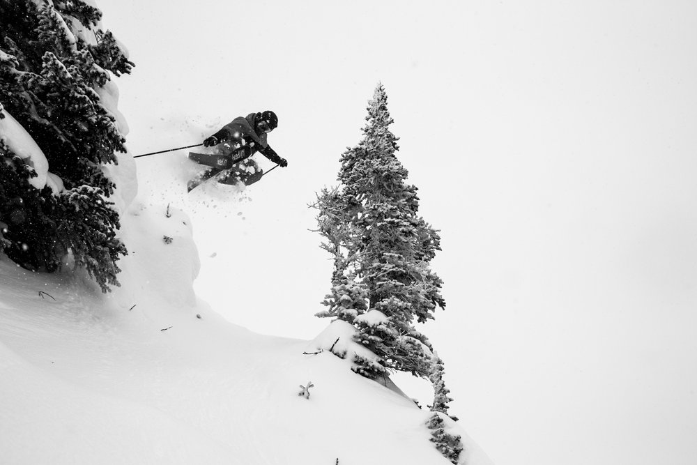 Air+powder+trees = fun at the Sun. - © Liam Doran