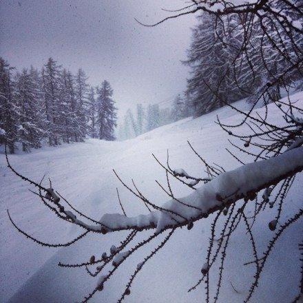 C'est génial la neige tombe à gogo ... Un vrai bonheur !!