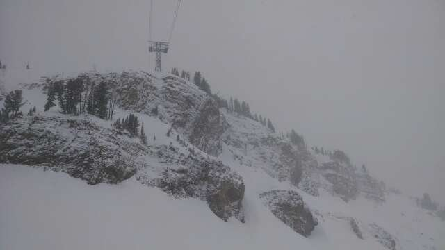 11 in overnight,  more coming down all day long,  poor contrast in the higher elevations