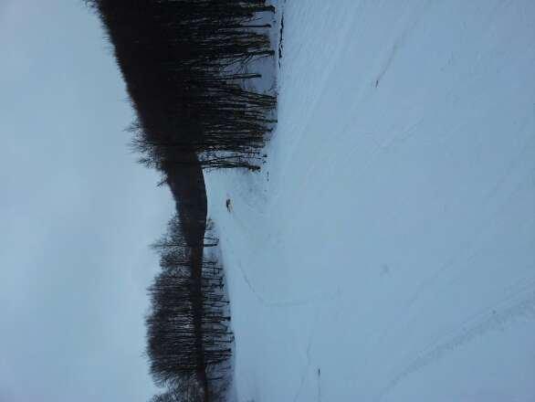 Neve fresca ma molto bagnata!! Sciata faticosa