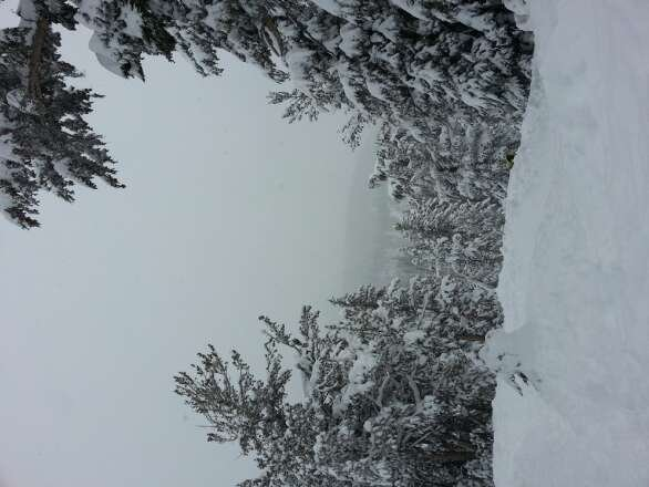 Snowed all day today (: super nice deep powder!!!