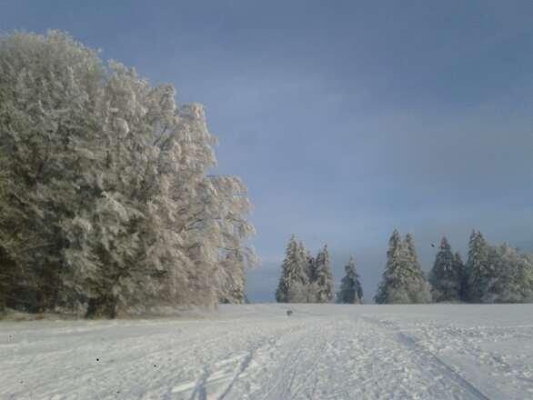 am 1.02.14 super Wetter und Schnee und Traumlandschaft:-)