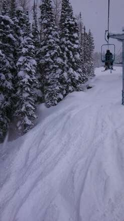 Fresh powder!!  Parts of the mountain are mid-thigh to waist high!!