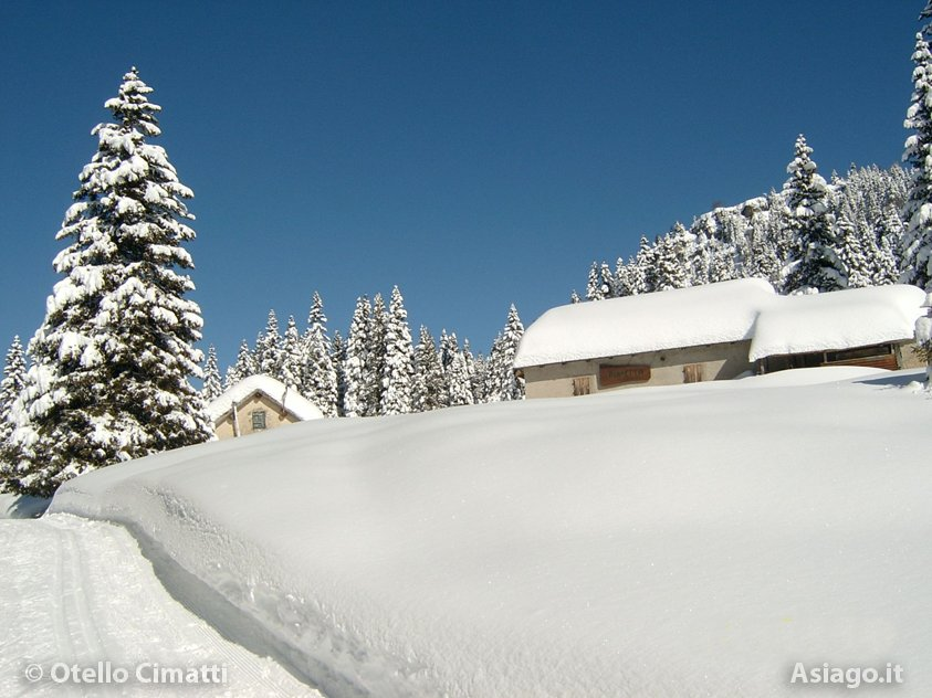 Asiago, 2 Feb 2014