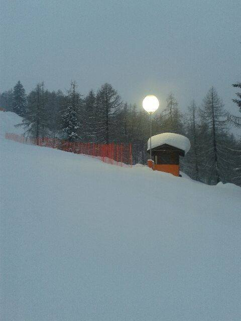 Domobianca - Neve fresca 17 Gen 2014