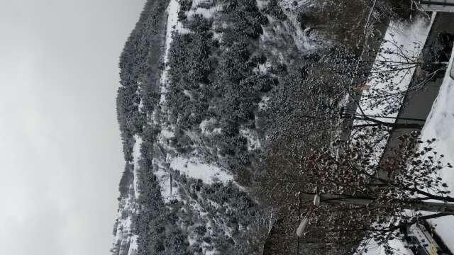 chutes de neige depuis cette nuit, pistes agréables :)