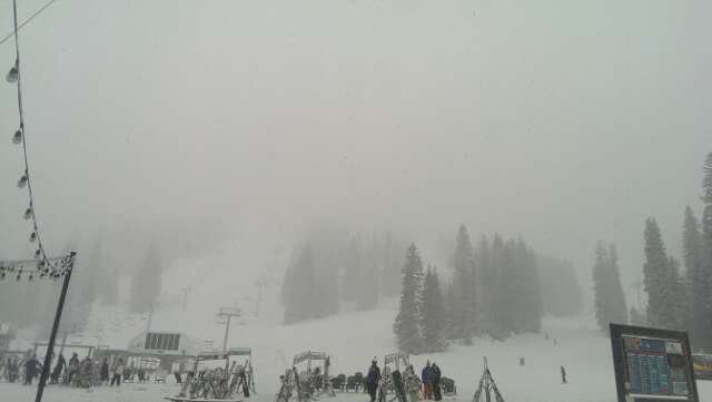 The snow is comin down! perfect late season skiing!