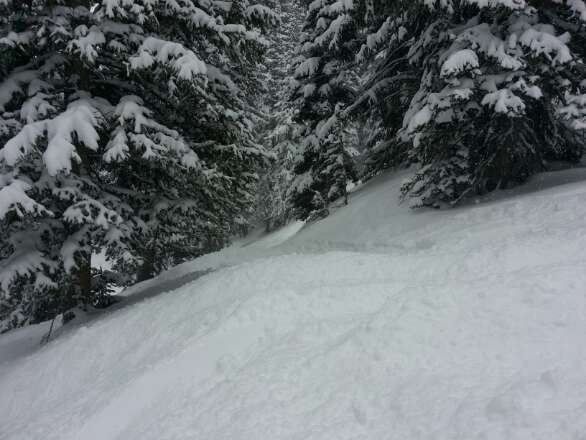 sick powder day..at least 10