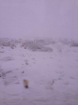 Cayo a full nieve ayer!