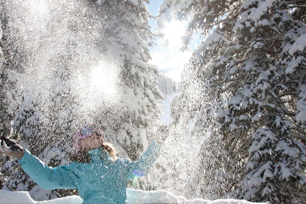 Snowbird happiness.  - © Snowbird Ski and Summer Resort
