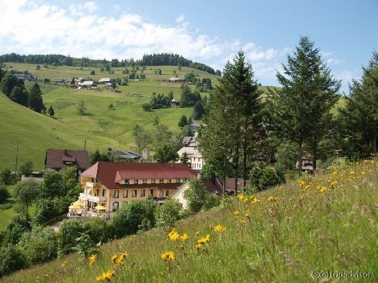 Vital-Hotel Gruener Baum
